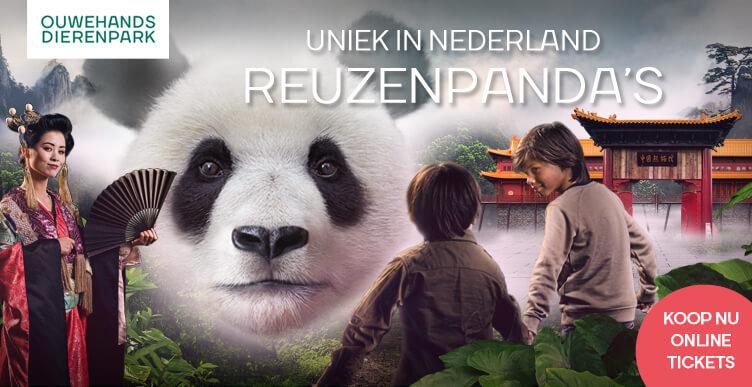 Bezoek de reuzenpanda's in Ouwehands Dierenpark!