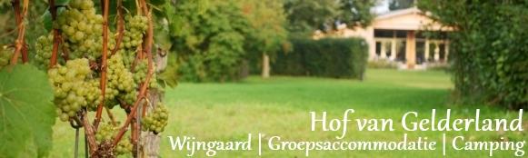 Groepsaccommodatie camping en wijngaard Hof van Gelderland op Erve Wisselink