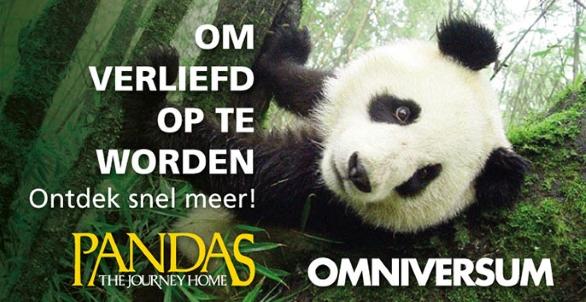 bekijk Panda's The Journey Home></a>       <h2>Terug naar de wildernis</h2>         <p id=